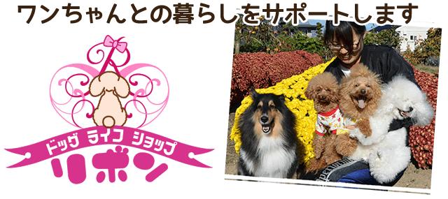 ドッグライフショップリボン(飯田市の愛犬トリミングショップ)